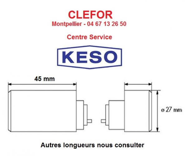 clés cylindres keso 2000 2000s 4000s omega clefor centre service